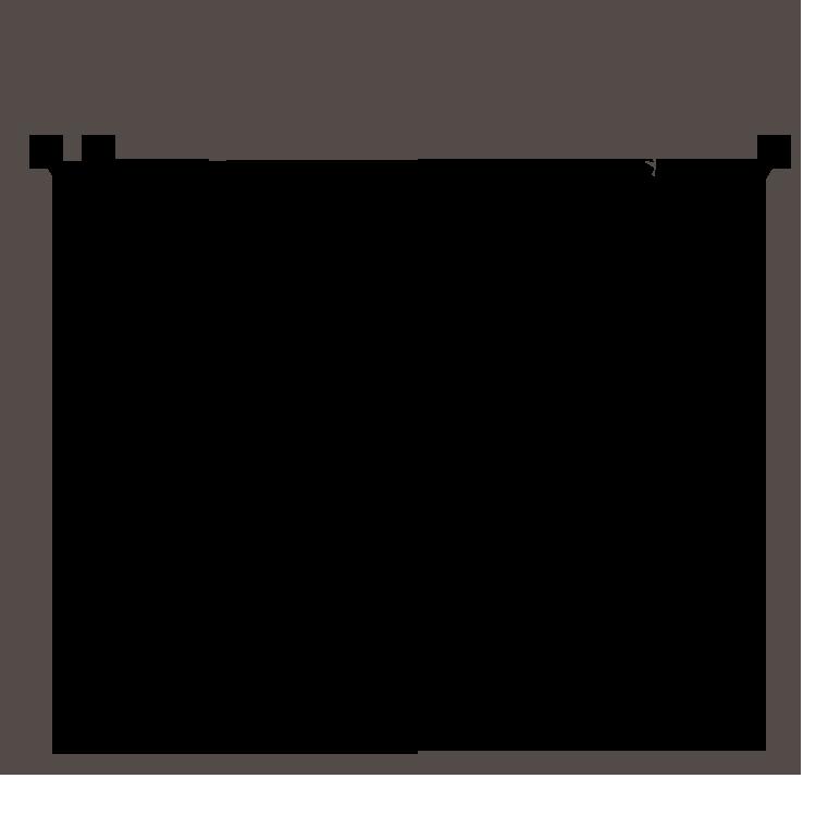 VivSoft